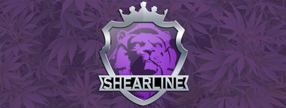 Shearline About Us Logo